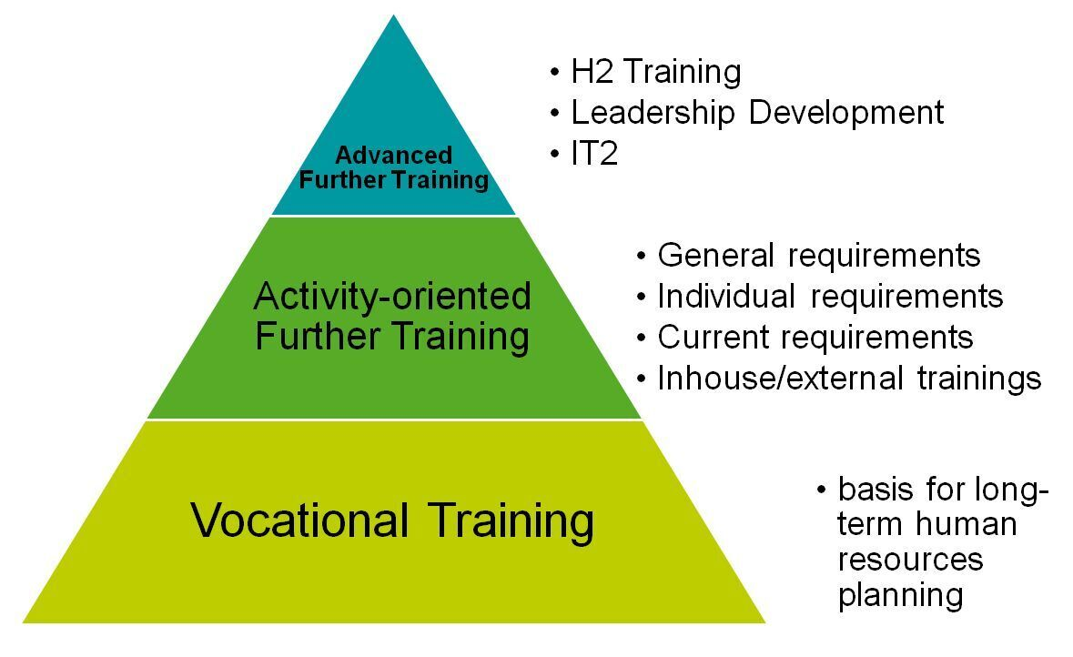 Grpahic about vocational training